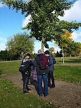 Quizgruppe vor Ginkgo (Foto Gisela Baudy)